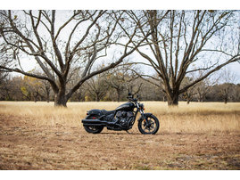 2022 Indian Chief Dark Horse
